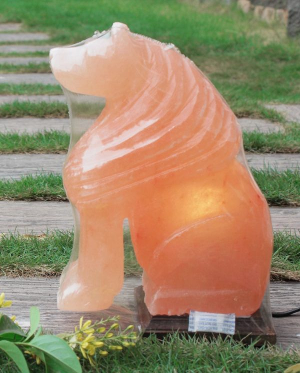 Himalayan Pink Salt Lion Shaped Lamp - Hub Salt eShop