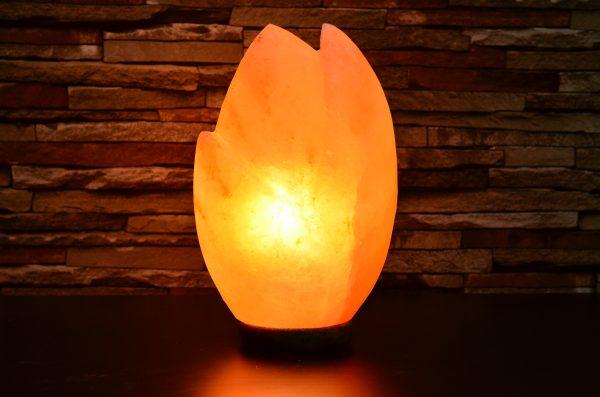 Himalayan Pink Salt Lotus Shaped Lamp - Hub Salt eShop
