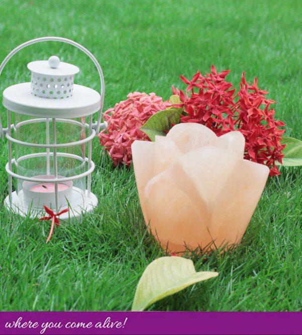 Rose Bud Tea Light-candle holder