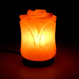 Himalayan Pink Salt Tulip Shaped Lamp - Hub Salt eShop