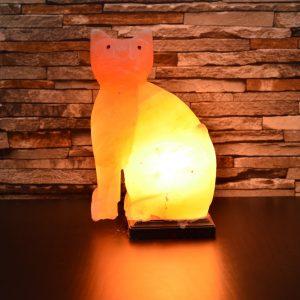 cat-salt-lamp